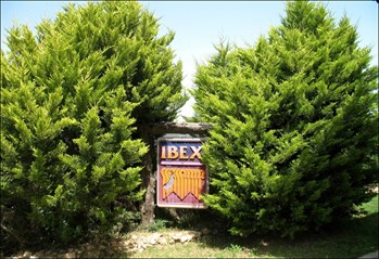 Main Article IBEX sign.jpg
