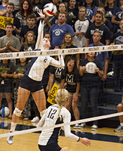 Volleyball Set to begin Campaign on Wednesday