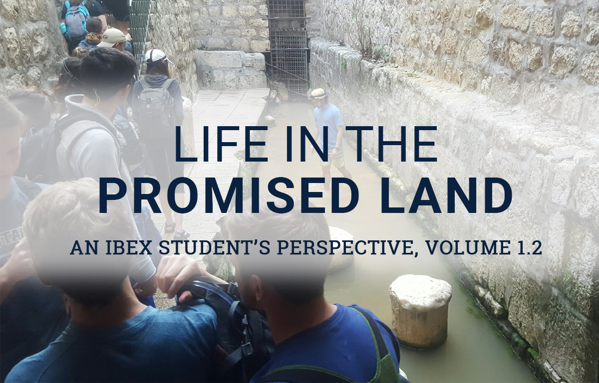 Life in the Promised Land: Hezekiah's Tunnel image