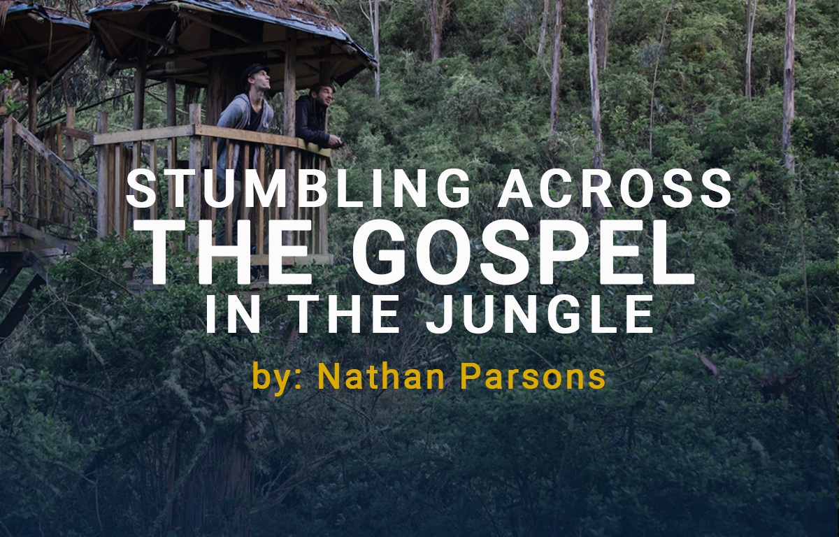 Stumbling Across the Gospel in the Jungle image
