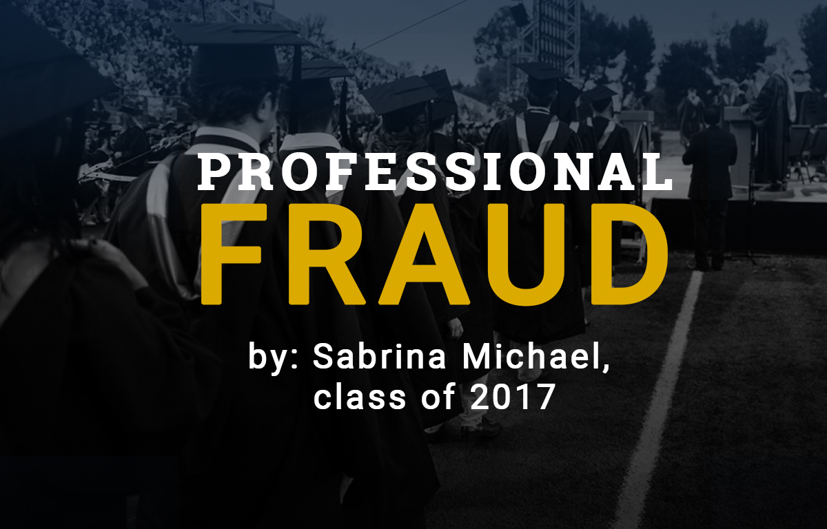 Professional Fraud image